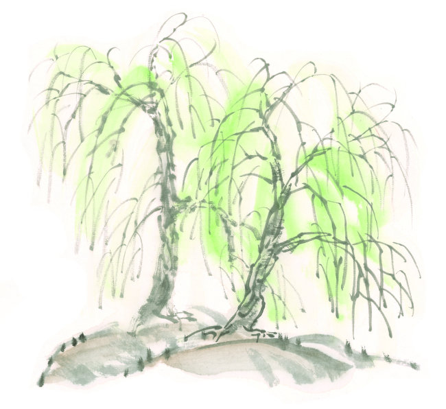 传统中国绘画柳树模板下载 995729 其他 其它图片 简历 档案 地震