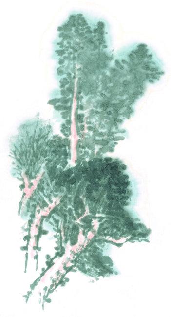 水墨画; 中国绘画山水画树插图