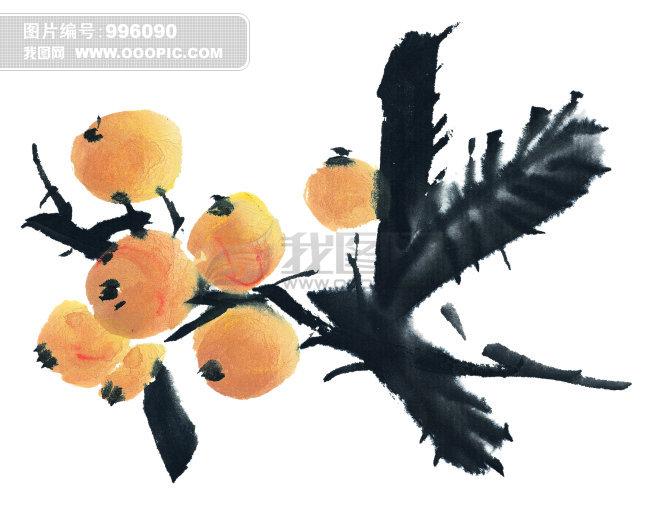 国画工笔枇杷的画法步骤
