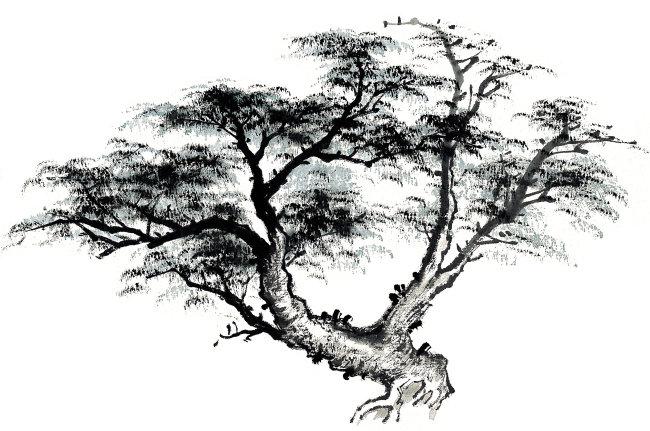 国画 中国画 传统绘画 墨韵 中国书画 气势 气韵 境界 古树 水墨 松树
