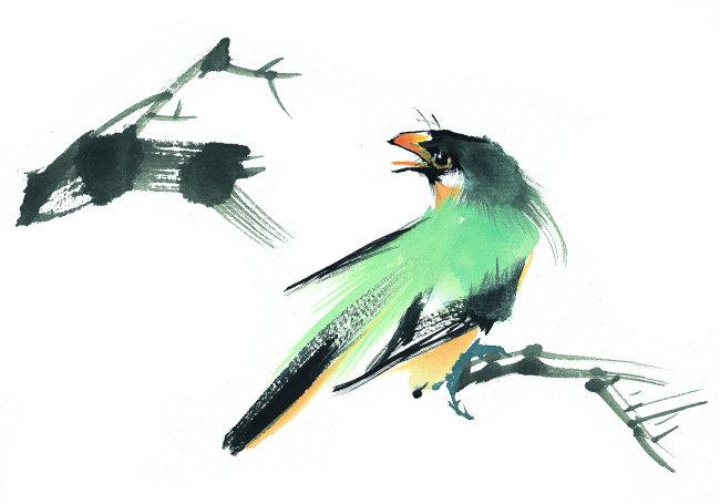 高清彩绘壁纸动物