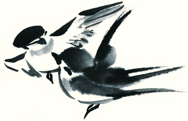 燕子绘画步骤国画