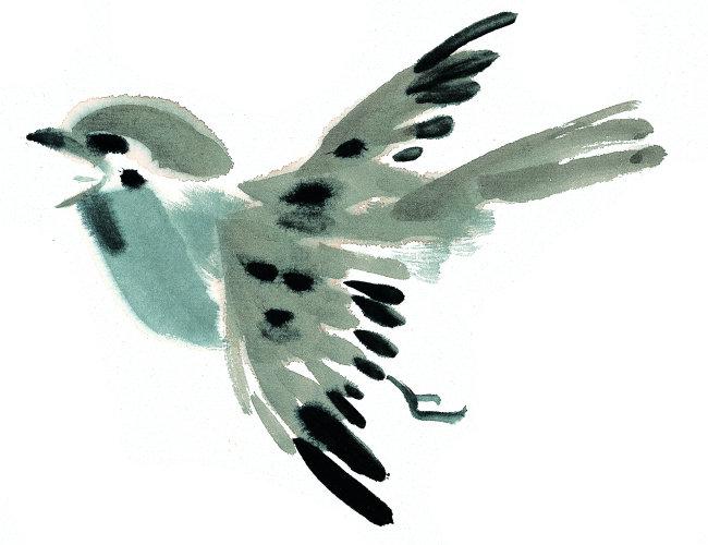 中国书画 气势 气韵 意境 境界 墨鸟 中国水墨画素材 中国风水墨画