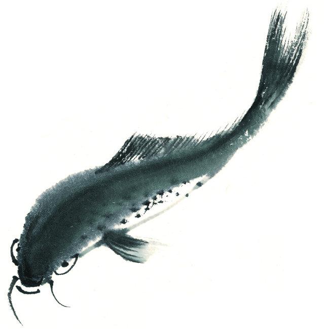 中国水墨画素材 中国风水墨画 中国传统绘画 绘画 彩绘 插画 海底动物