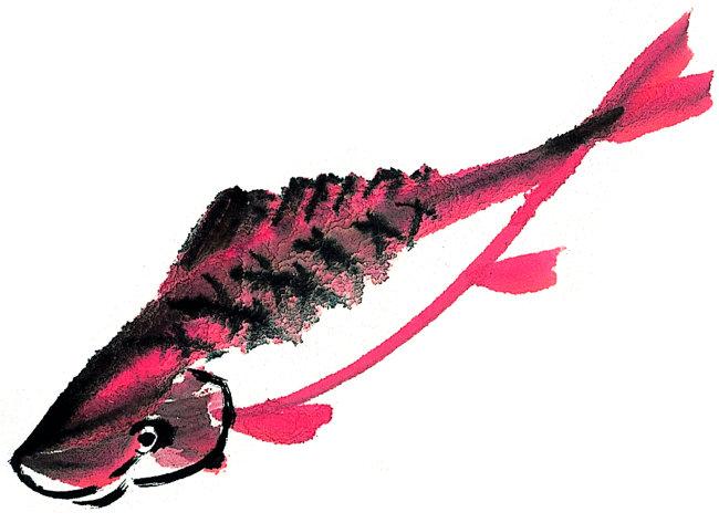 意境手绘插画鱼