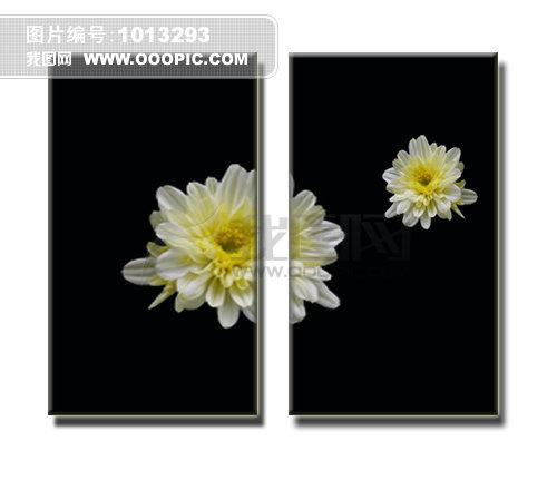 简单花朵无框画设计图片