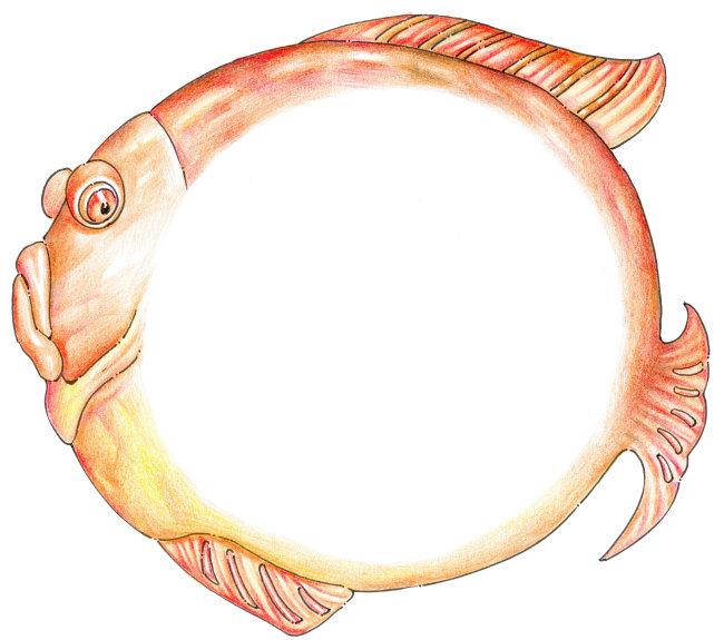 手绘鱼 鱼儿 鱼模板下载 手绘鱼 鱼儿 鱼图片下载 手绘鱼