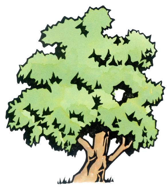 树木可爱卡通画