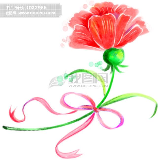 康乃馨花瓣