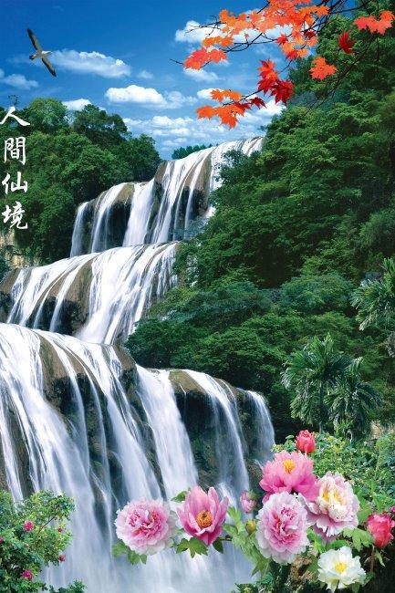 瀑布风景 瀑布图片 森林 森林树木 森林风景 森林背景图 牡丹 牡丹花