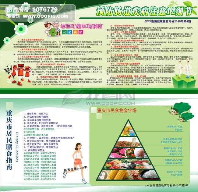 cdr 食物金字塔