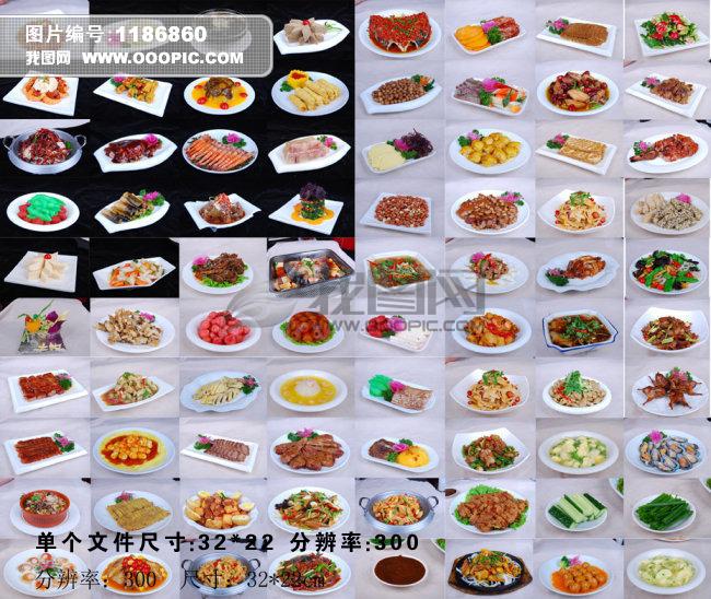 菜谱 菜单 菜单设计