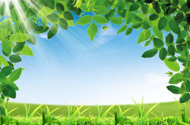 背景 素材 草地/[版权图片]草地 树叶背景 素材