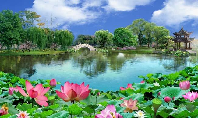 (原创)悟荷: - liangshange - 一线天
