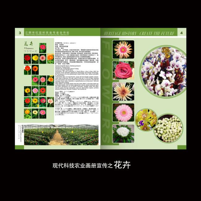 绿色封面设计 绿色底纹 画册 画册设计 大气 内页 内页设计 内页样式图片