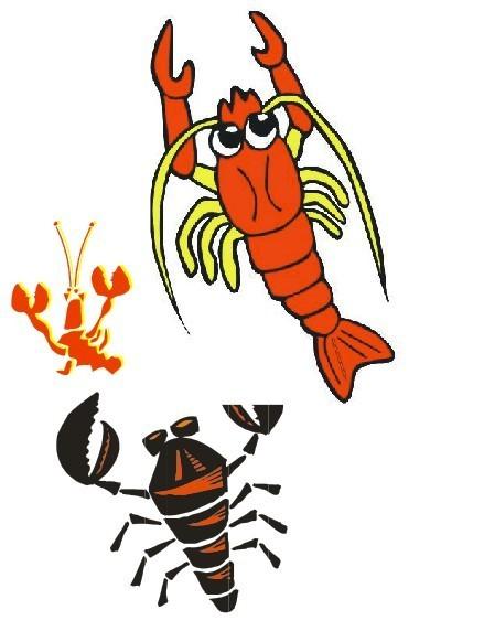 卡通模板下载 虾 卡通图片下载