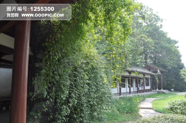 现代建筑园林小径