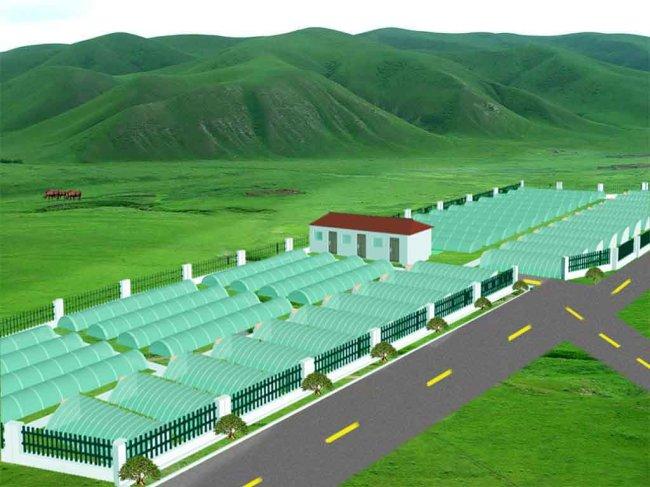 农场设计模板下载(图片编号:1276118)
