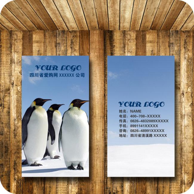 动物 企鹅 名片模板下载