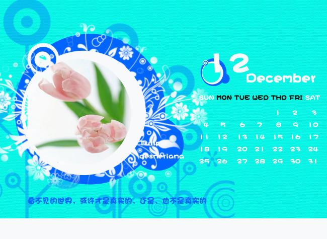 2011年新台历12月(郁金香)图片