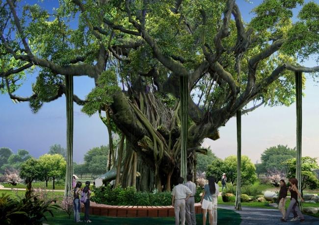 榕树景观设计