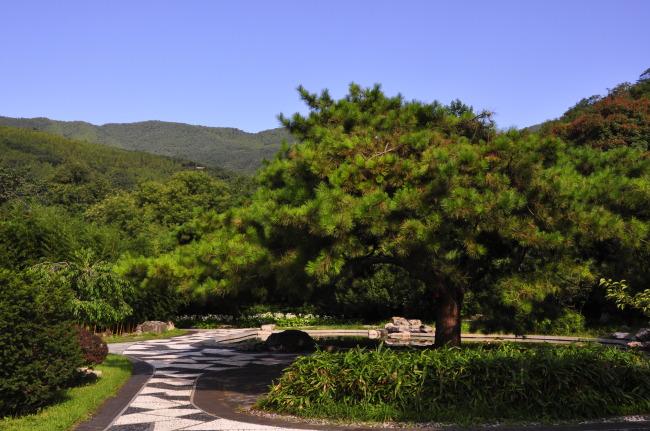 自然风景模板下载 自然风景图片下载