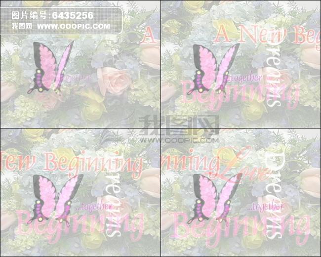 婚庆动态蝴蝶飞舞高清动态视频模板下载 6435256 动态视频素材