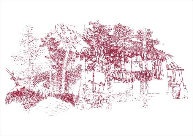 树林乡村小农舍-手绘画
