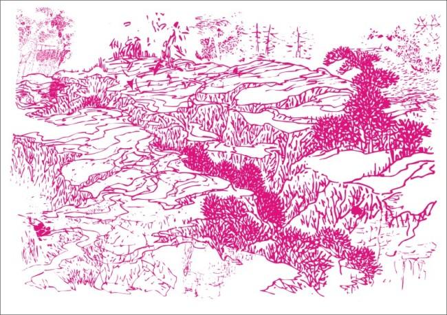 手绘画 美术画 工笔画 简写画 简笔画 钢笔画 画 美感 树叶 小草 树