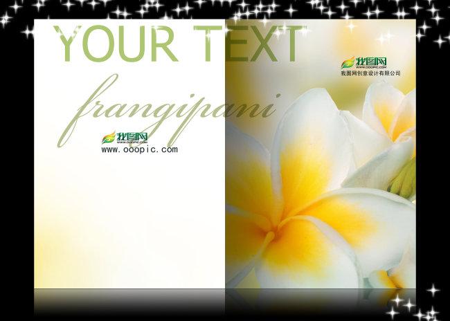 画册 画册设计 画册封面 画册模板下载 花艺模板 花朵 花瓣 花卉 花藤