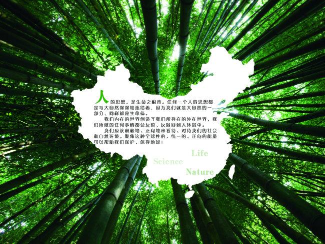 保护树木模板下载 保护树木图片下载