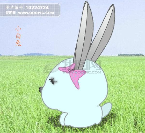 草原小白兔模板下载(图片编号:10224724)