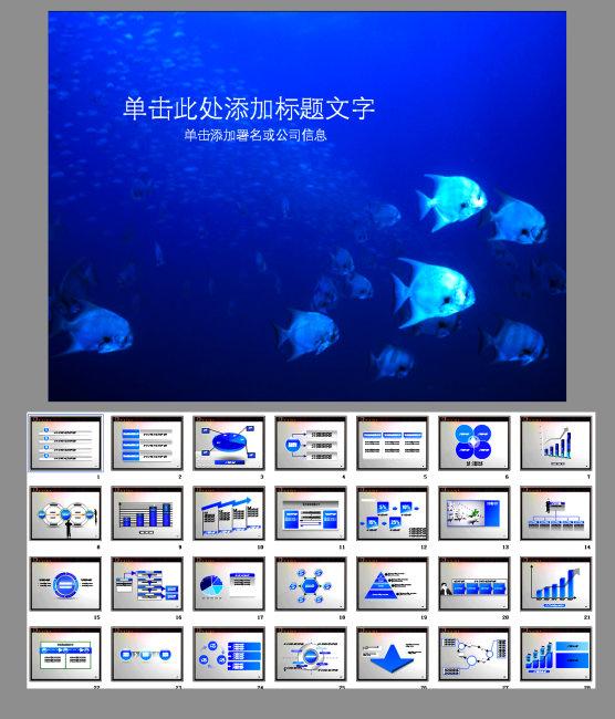 图表 汇报 报告 介绍 总结 鱼 海洋 海洋生物 海洋世界 海洋动物 海洋