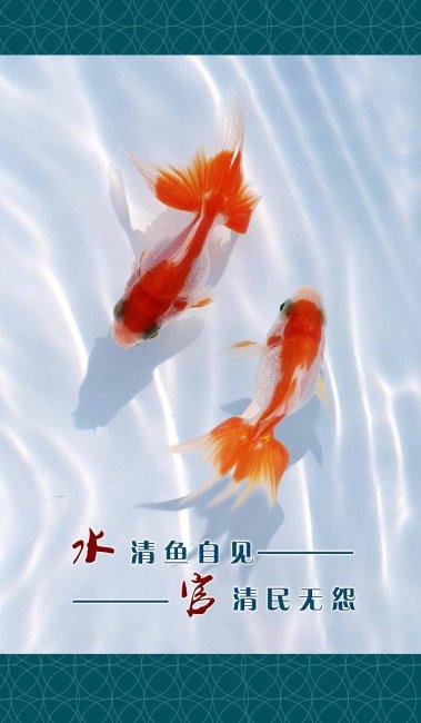 廉政宣传 鱼 水中鱼