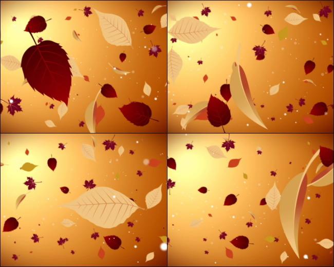 视频素材 动态视频素材 动态|特效|背景视频素材 > 飘落的树叶  0 %图片