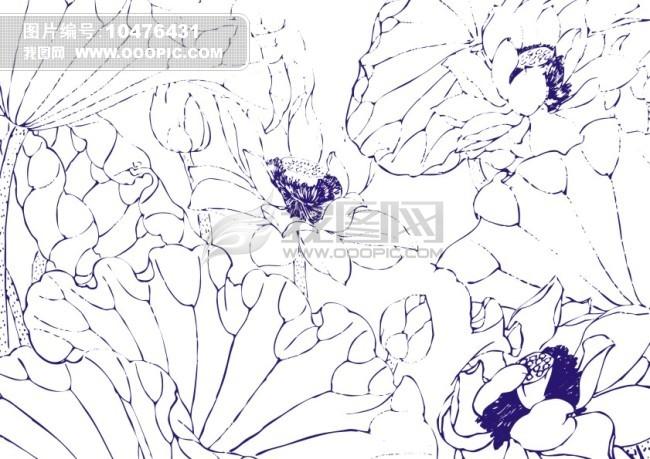 纯洁小荷莲 手绘画模板下载 10476431 花纹插画