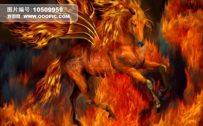 > 火焰天马  上一个下一个 火焰天马模板下载 火焰天马图片下载 动物