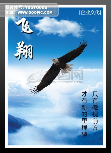 飞翔宣传海报手绘