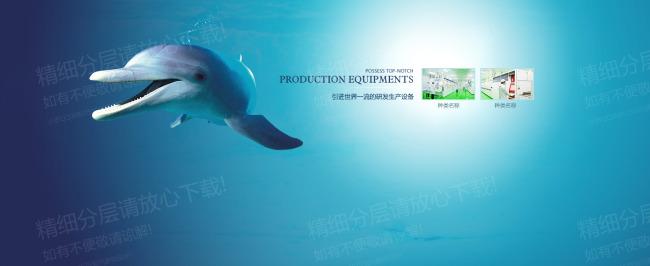 banner banner素材 海豚