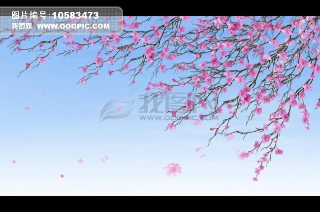 飘落的花瓣背景视频
