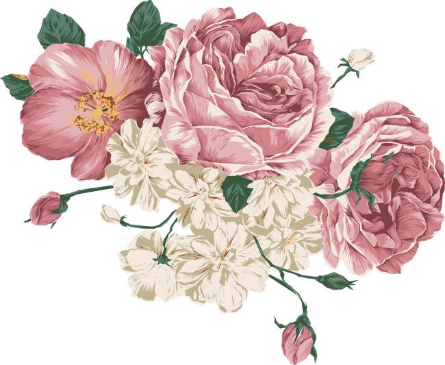 国花手绘画