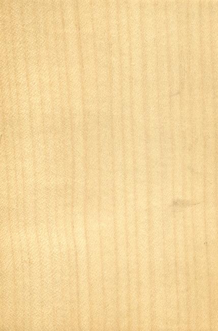 材质纹理 条纹 肌理 纹理