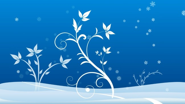 卡通雪景 花纹生长(1080p)