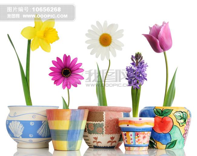 卡通 油画 花瓶 彩色 花朵 花瓶 陶瓷 古董 油画花瓶 陶瓷油画 手绘