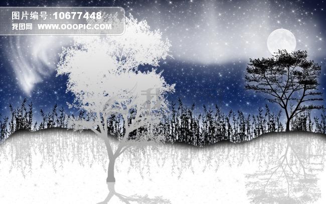 冬天 雪景 夜晚素材图片素材 10677448
