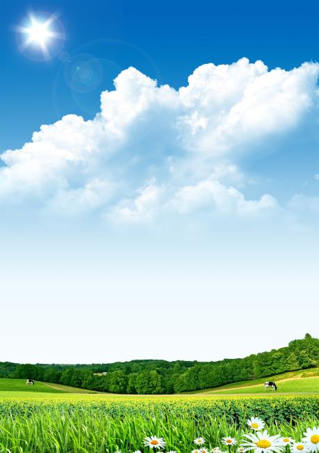 森林天空贴图下载