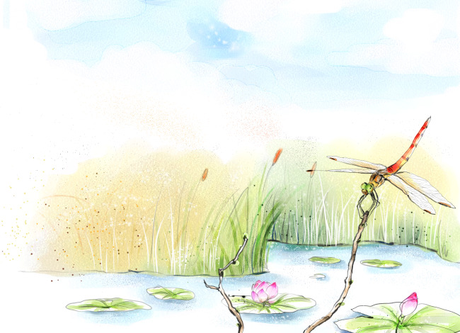 蜻蜓点水装饰画