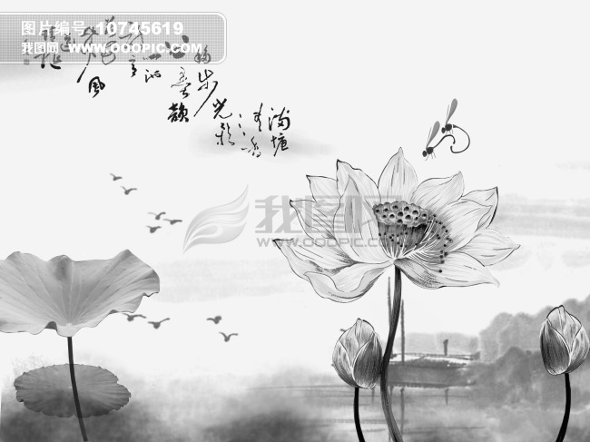 中国水墨画|荷花图片素材(图片编号:10745619)