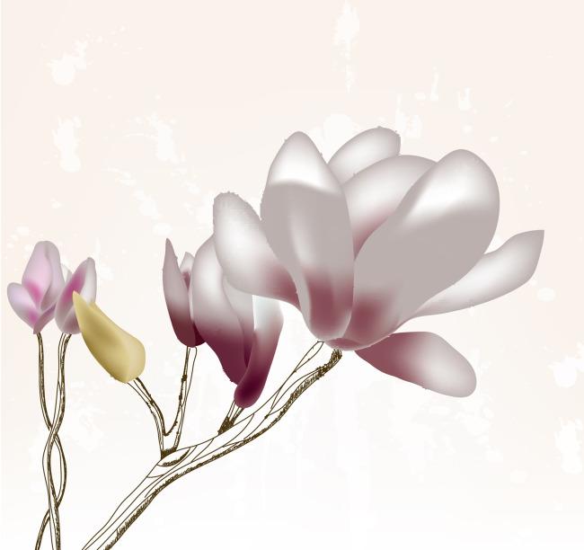 兰花景观手绘效果图