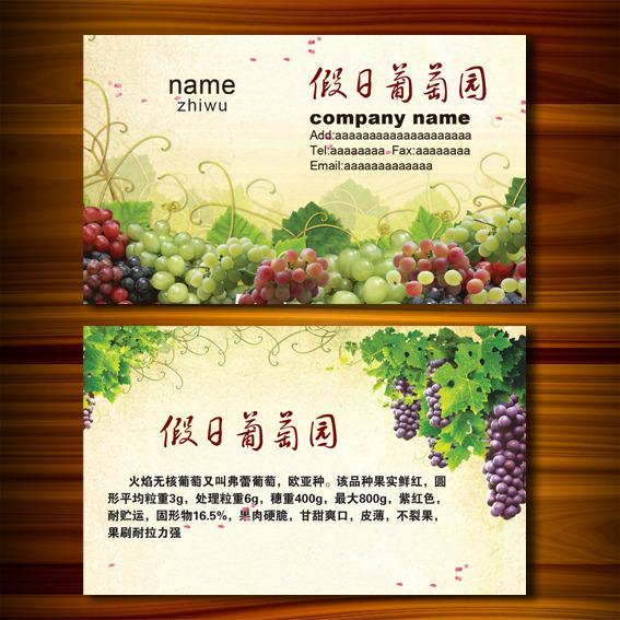 水果葡萄名片模板